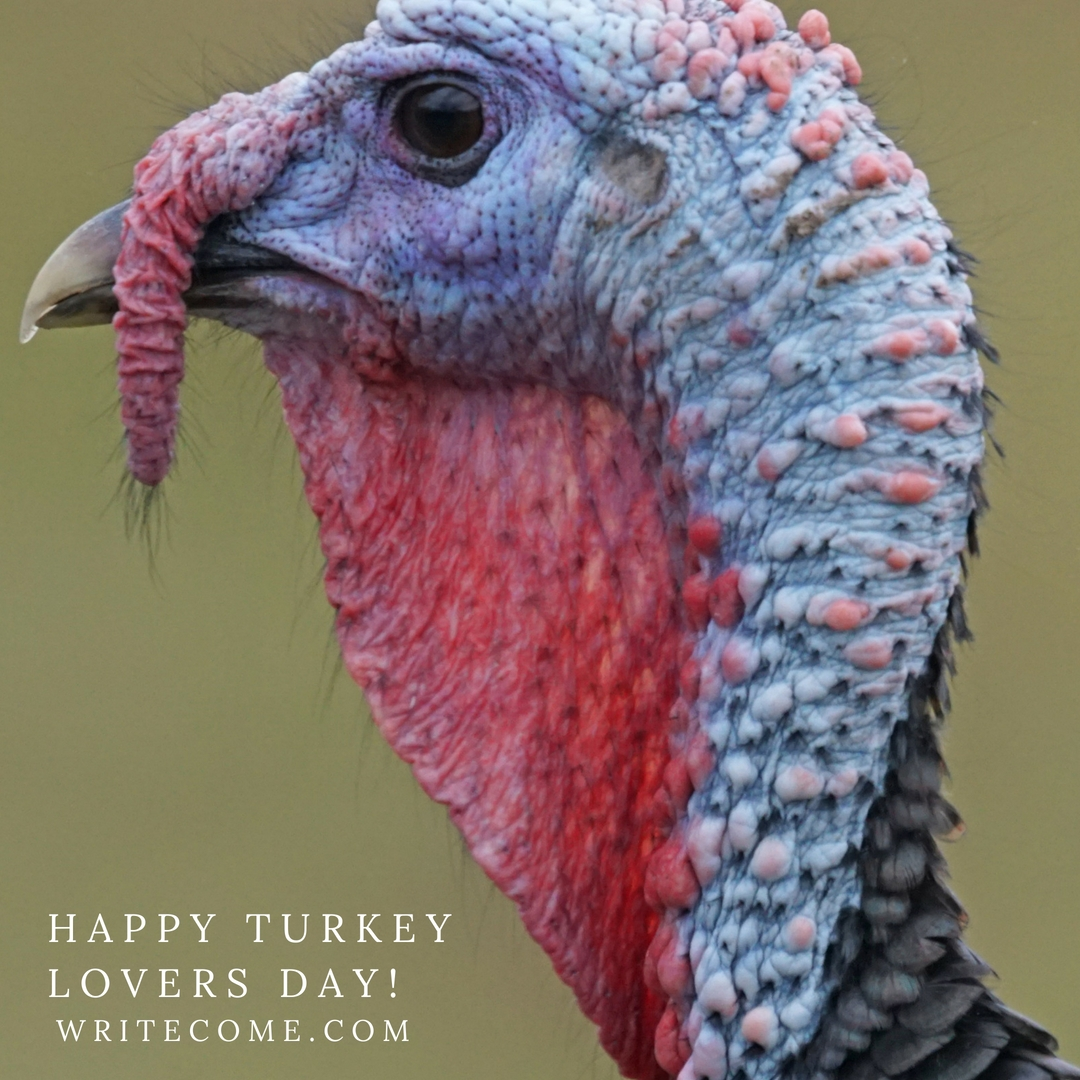 Happy Turkey Lovers Day!