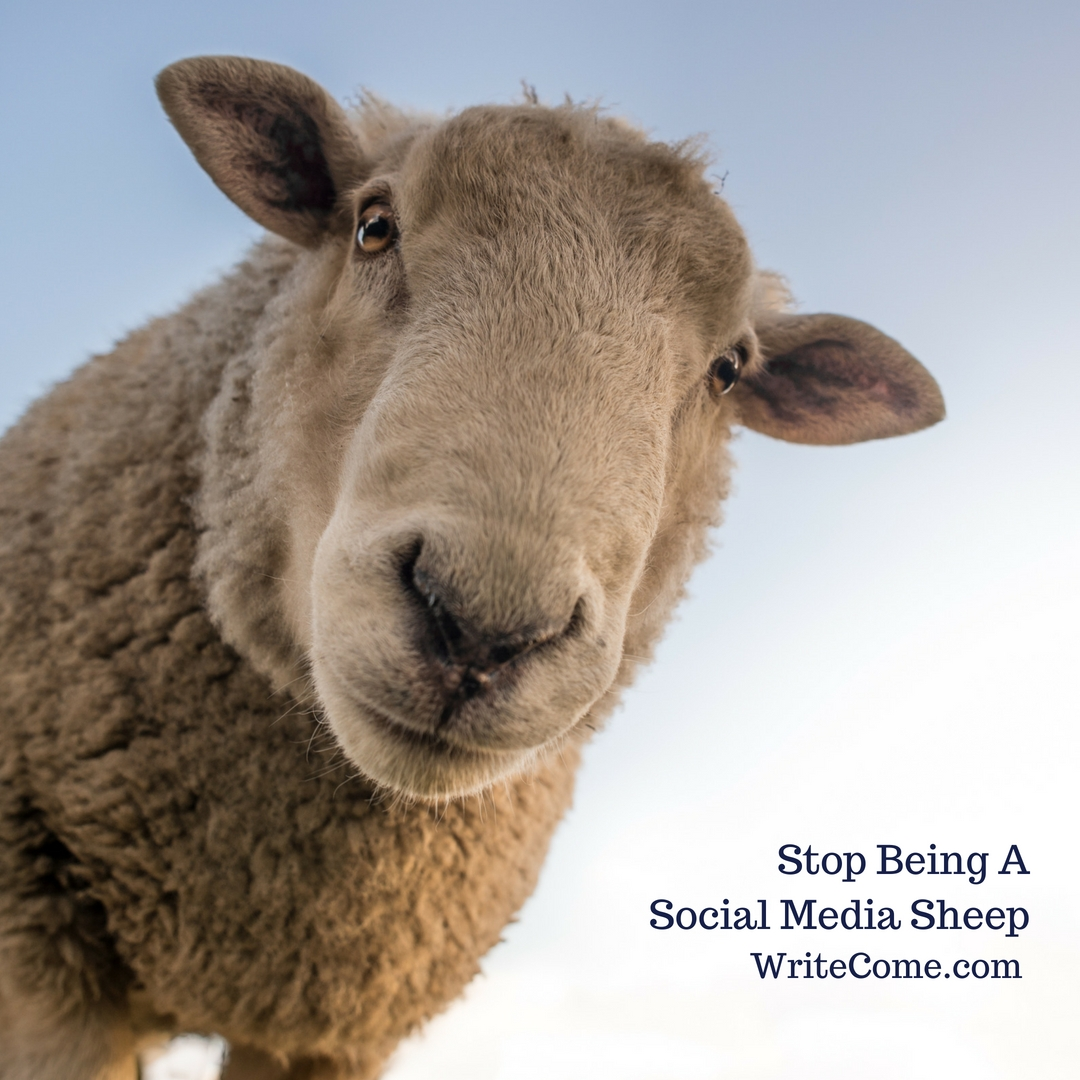 Stop Being A Social Media Sheep